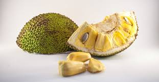 Are Jackfruit Seeds Poisonous? Benefits, Concerns, and Uses